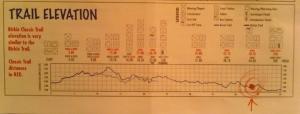 Trail Elevation for the Birkebeiner